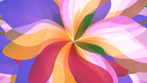 Fantasy Flower VI Animation