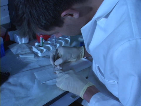 A medical technician performs tests in a lab Footage