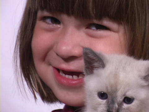 A little girl holds and kisses a Siamese kitten Footage