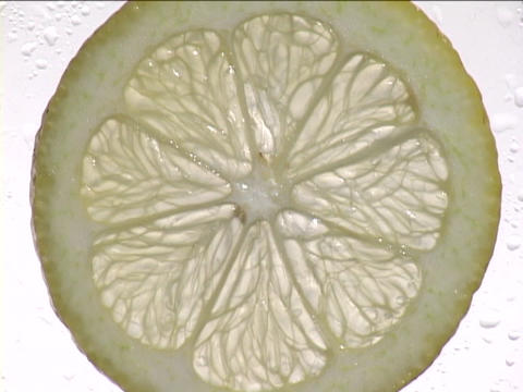 Light shines through a slice of lemon Footage