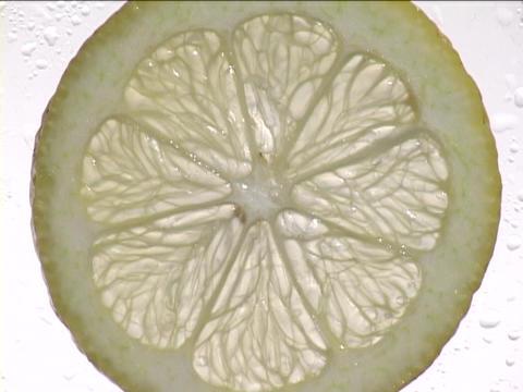 Light shines through a slice of lemon Stock Video Footage