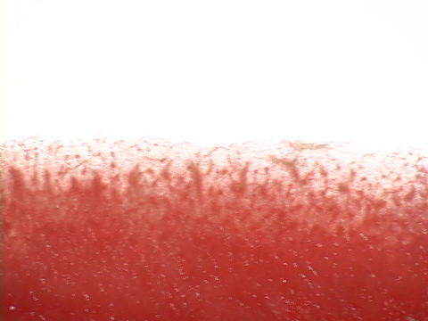 Light shines on a slice of watermelon Stock Video Footage