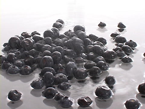Fresh blueberries and clear water spill onto a white surface Stock Video Footage