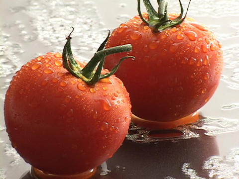 Fresh ripe tomatoes rest on a wet surface Footage