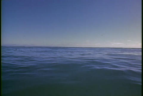 A man dives into the ocean and swims away Stock Video Footage