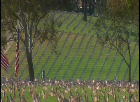 View of a military cemetery Stock Video Footage
