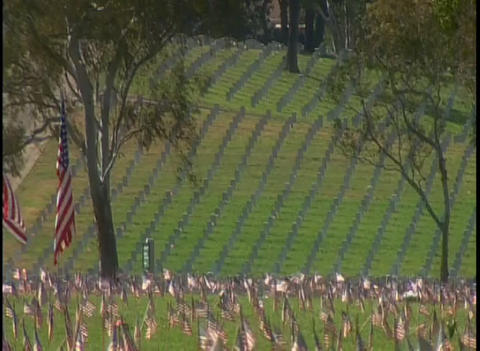 View of a military cemetery Footage