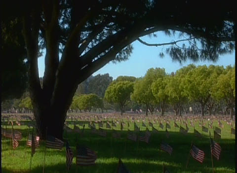 Hundreds of graves in a military cemetery under a Stock Video Footage