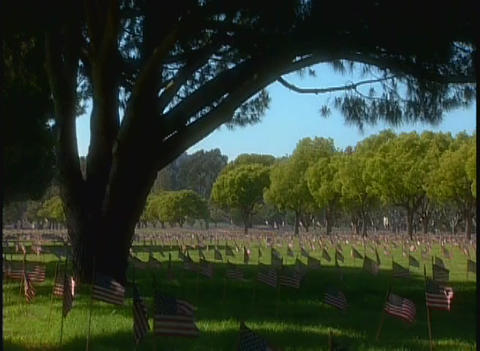 Hundreds of graves in a military cemetery under a  Footage