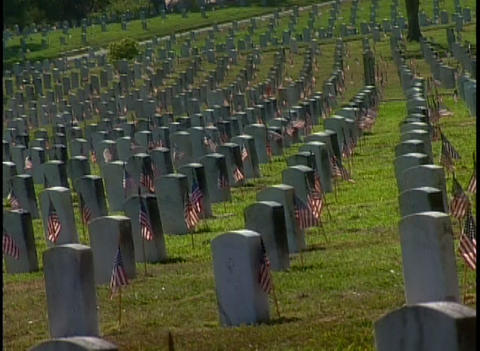 Hundreds of graves in a military cemetery Footage
