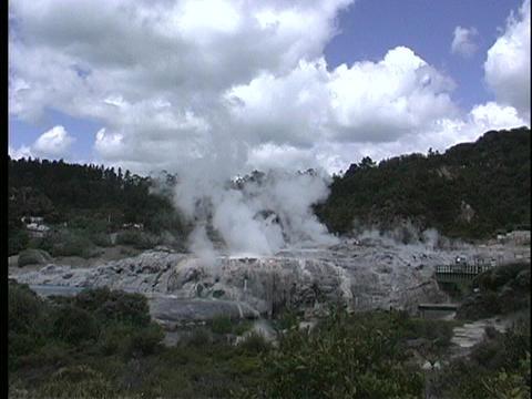 A geyser steams in a thermal region near Rotorua, New Zealand Footage