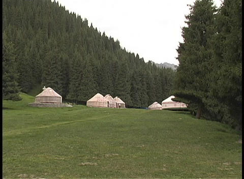Yurts In Northern China Grace A Clearing Surrounded By Pine Trees stock footage