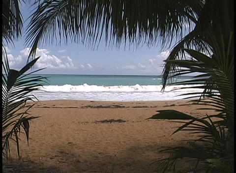 Palm fronds frame a view of gentle waves break on the... Stock Video Footage