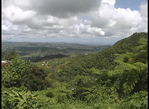Fluffy white clouds gather above the lush, green Puerto... Stock Video Footage