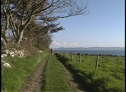 A person walks along an old grassy road in Sligo County, Ireland Footage