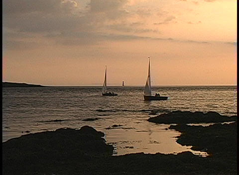 Sailboats glide gently across the water near Roses Point, Ireland Footage