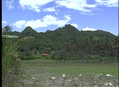 Establishing shot of Rarotonga's grass covered hills, one of the Cook Islands Footage