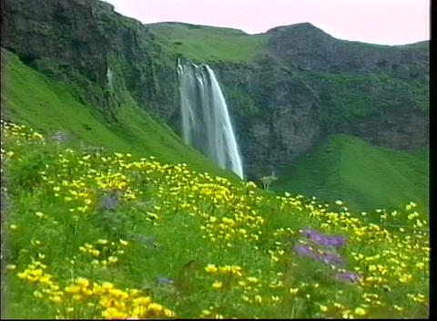 A lovely flower covered hillside is the foreground for... Stock Video Footage