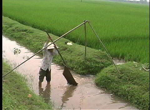 A birds-eye view of a woman hand irrigating a crop in... Stock Video Footage