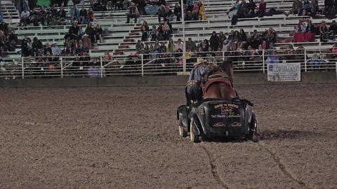 Cowboy and Mustang horse driving in car rodeo 4K 295 Footage