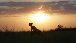 Young woman silhouette practicing yoga in front of beautiful summer sunset, Frus Footage