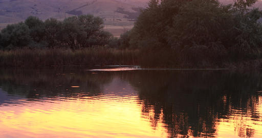 Evening sunset reflection over lake and trees DCI 4K Footage