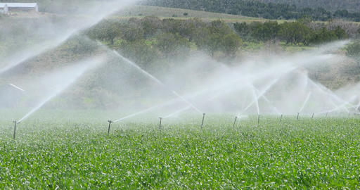 Farm irrigation sprinklers agriculture springtime growing DCI 4K Footage