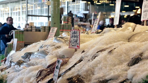 Fish market Seattle ice fresh seafood HD 6711 Footage