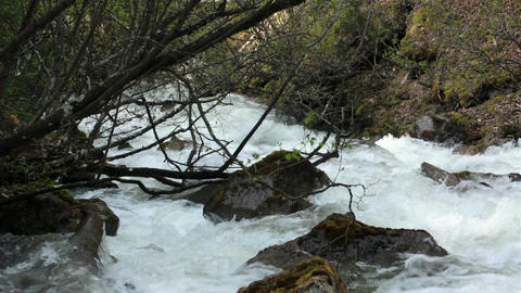 Flooded mountain river Skagway Alaska snow melt HD 7159 Footage