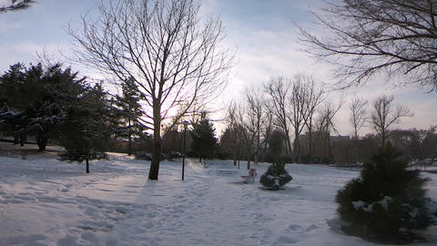 Park view in winter ライブ動画