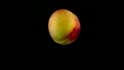 Peach falls in the water in slow motion. Isolated on black background with alpha Live Action