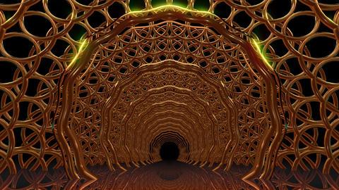 Golden Gate Tunnel Animation