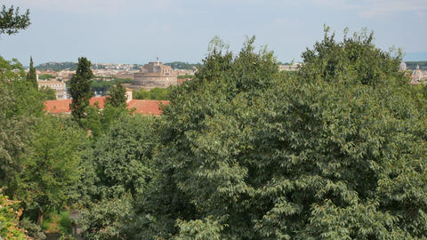 View from the hill on the green trees and Rome sights Live Action