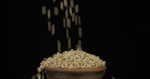 Whole grains of pearl barley fall on a bunch of grains lying in a clay pot and Live Action