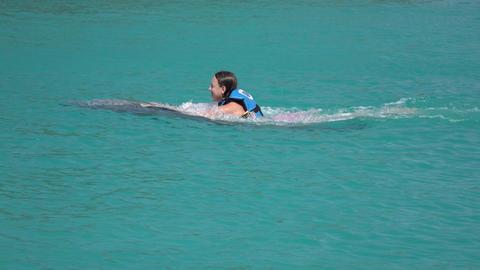 Grand Cayman Caribbean captive Dolphin girl swims 4K Footage