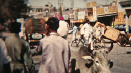 India street traffic cows people vintage film Circa 1960 HD 0085 Footage