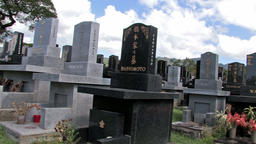 Japanese cemetery headstones Hawaii pan HD Footage