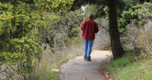 Man walks mountain forest trail using cell phone DCI 4K Footage