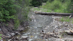 Mountain stream water flowing forest rocky Footage