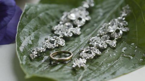 Beautiful earrings and a gold engagement ring on a wet green leaf Live Action