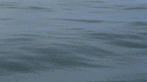 Ocean waves smooth rolling blue HD 7783 Footage