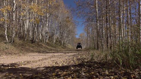 Recreation 4x4 RZR drives mountain dirt trail road autumn 4K 010 Footage