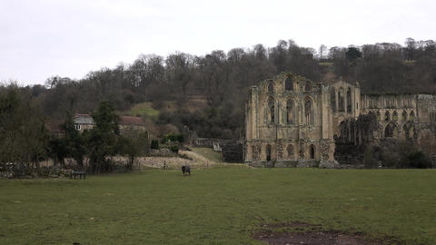 Rievaulx Abbey church ruins England rural 4K Footage