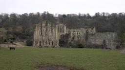 Rievaulx Abbey York England ancient ruins 4K Footage