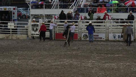 Rodeo cowboy walks back to chutes 4K 269 Footage