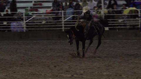 Saddle Bronc horse cowboy 8 seconds 4K 289 Footage