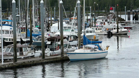 Sailboats fishing vacation boats Ketchikan Alaska marina HD 7626 Footage