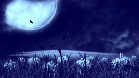 Halloween Night 3 Animation