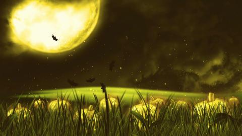 Halloween Night 4 Animation