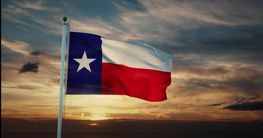 Texas flag waving represents Texan state in America USA - 4k Animation